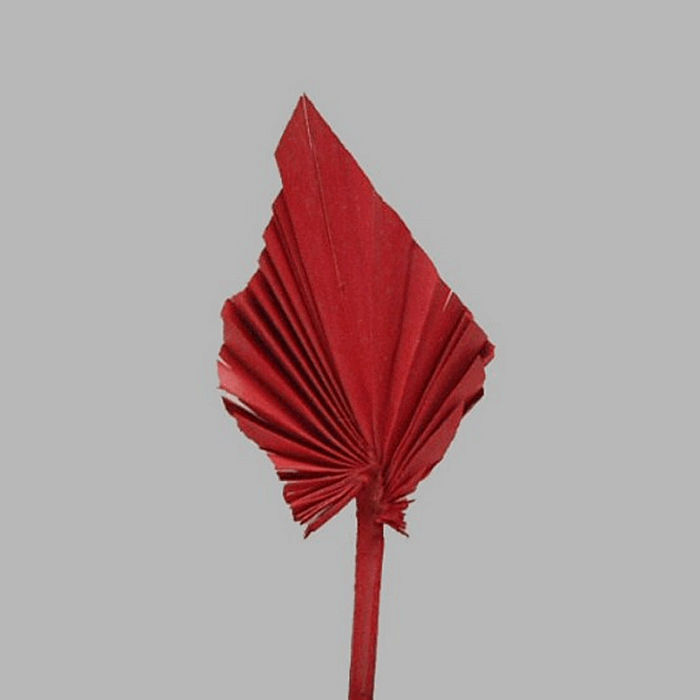 chinese fan leaf on a stick color red 26 x 10 cm