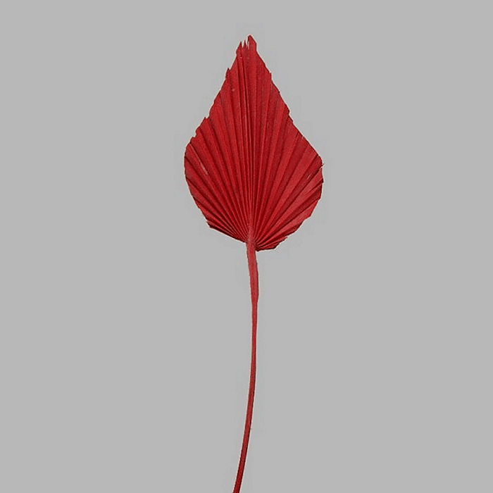 chinese fan leaf on a stick color red 47 x 10 cm