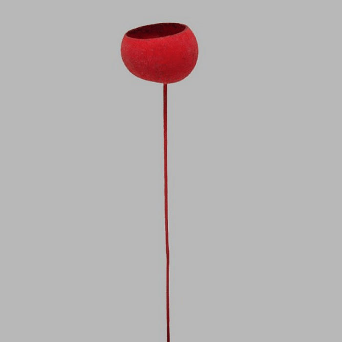 ball on a stick dried color red length 48 cm