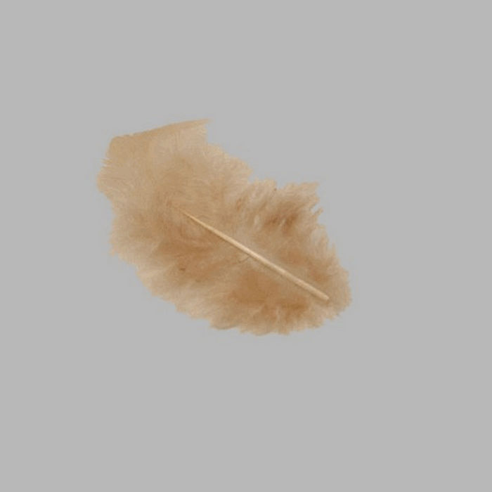 feathers for decoration color light brown small size