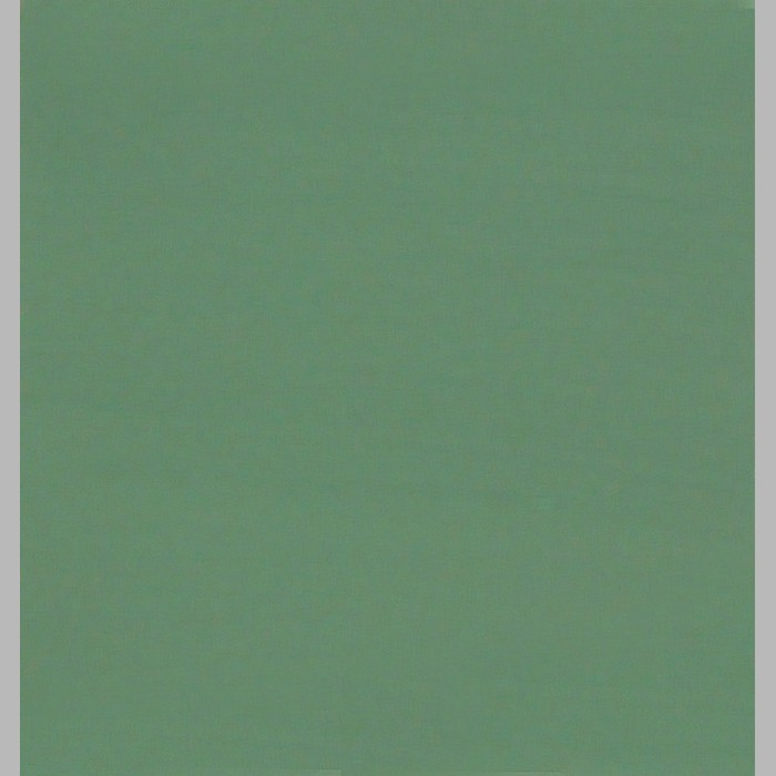 DECORATION PAINT | VENETIAN GREEN